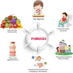 What Is A Protonic What Is Probiotics Yakult Probiotic Drinks India