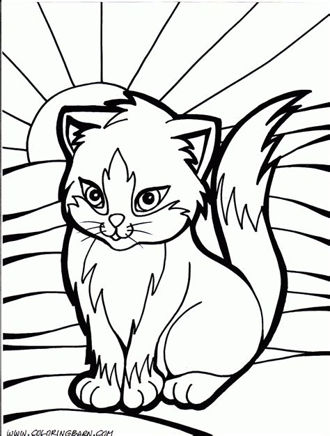 cat color pages printable cat kitten printable coloring