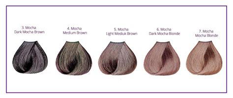 matrix hair color light golden brown mocha hair color chart highlights ideas with pictures
