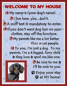 welcome to my house dog rules dachshund dog house rules refrigerator magnet personalized ebay