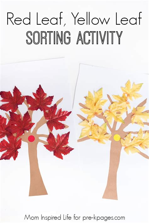 red leaf yellow leaf red leaf yellow leaf sorting activity pre k pages