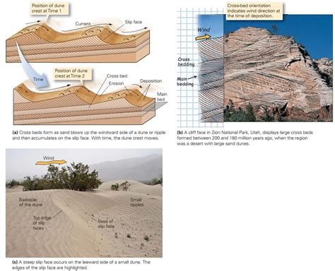 bedding geology bedding geology 28 images bedding geology geology