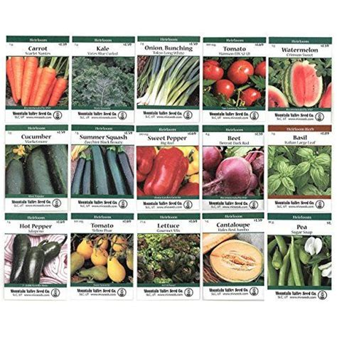 garden seeds vegetable heirloom vegetable garden seed collection assortment of