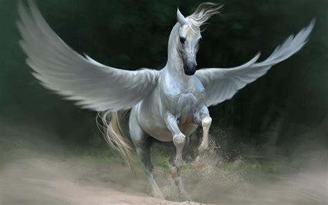 Pegasus   The Legendary Moonlight Sculptor Wiki   FANDOM