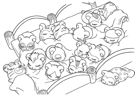 Coloring Page Hamster by Hamster Coloring Pages Coloringsuite