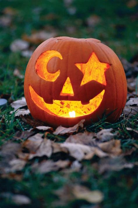 best carved pumpkins best 25 easy pumpkin carving ideas on easy