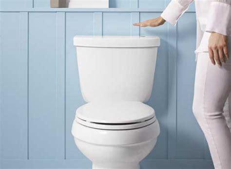 sciacquone a cassetta la cassetta wc migliore noi l abbiamo trovata