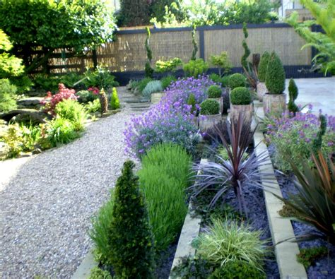 plants for outdoor pots archives garden trends