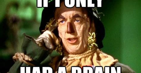 Wizard Of Oz Meme - if i only had a brain oh my aching head pinterest