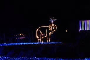 portland oregon zoo lights oregon zoo lights flickr photo