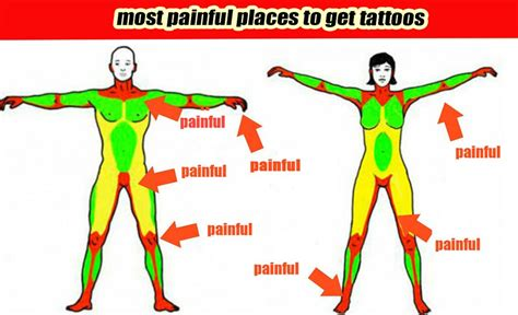 least painful place to get tattoo news tagged quot tattoos quot supply