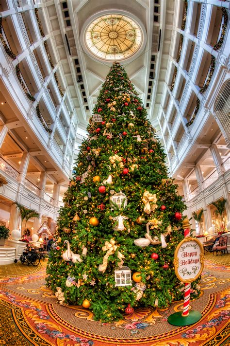 grand floridian christmas tree grand floridian hotel at disney matthew paulson photography