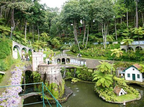 extreme backyard design extreme garden designs fairy gardens and miniature