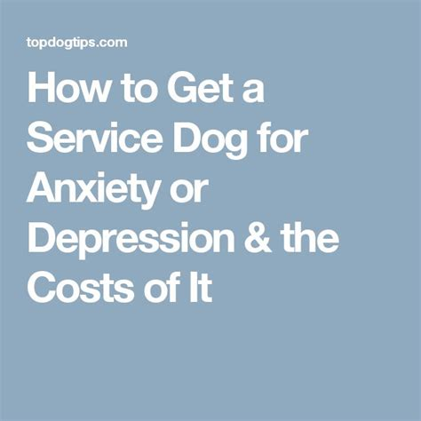 how to a service for anxiety 94 best service images on service dogs service and