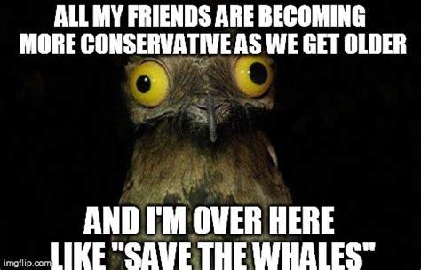 Potoo Meme - weird stuff i do potoo meme imgflip