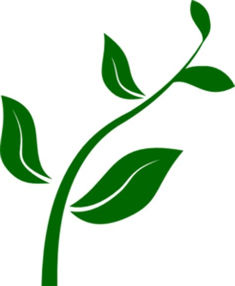 growing plant clipart clipart panda free clipart images
