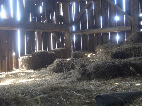 straw bales inside a barn image 500x375 pixels
