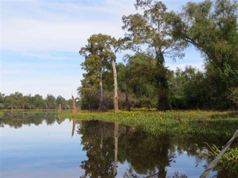 boat rental atchafalaya basin beautiful waterways picture of atchafalaya basin landing