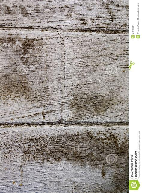 black mold on basement wall stock images image 31035754