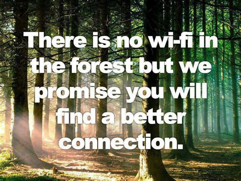 How To Connect With Nature connecting with nature quotes quotesgram