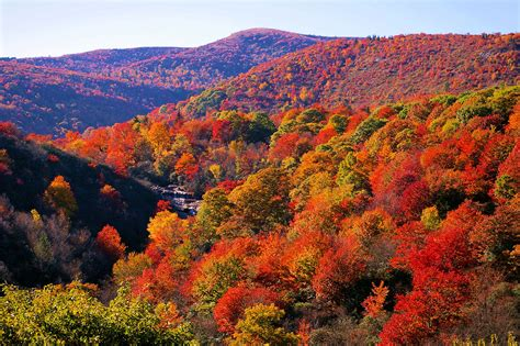 fall colors fall color asheville nc mountain travel tips