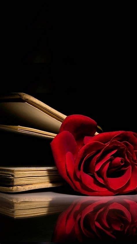 fondos de pantalla de rosas rojas blancas  azules hermosas