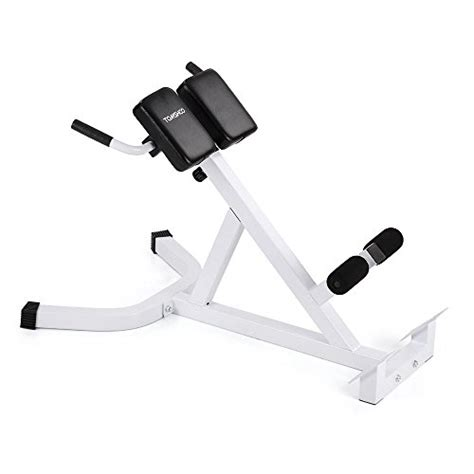 hyperextension multi bench tomshoo adjustable hyperextension roman chair multi