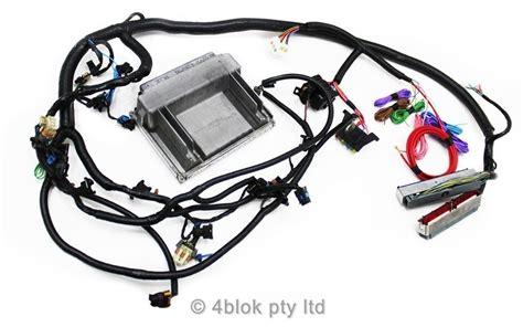 ls1 3 5 7 wiring loom ecu conversion retro fit