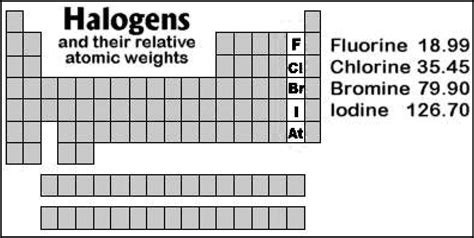 What Are Halogen Halogens