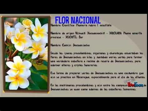 imagenes simbolos nacionales de centroamerica simbolos patrios y nacionales de nicaragua youtube