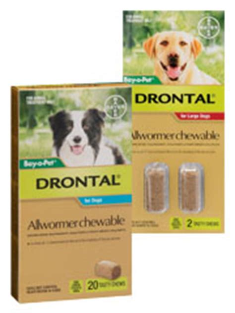 drontal plus for dogs flavor pet shed pet supplies at discount prices
