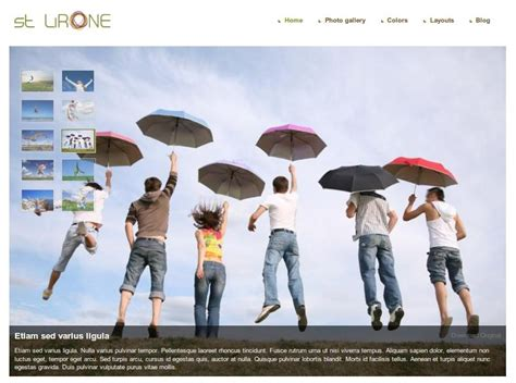 drupal theme art gallery 5 best drupal gallery themes from symphony themes drupal