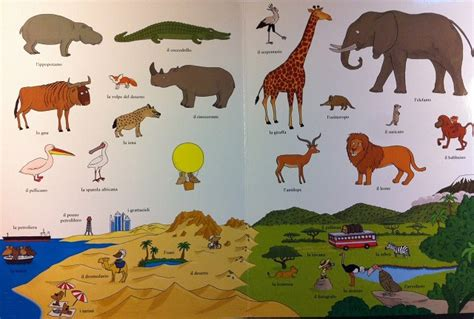 letture sugli animali per bambini lacittadeilibri it