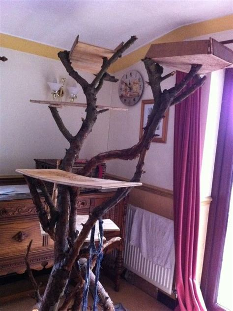 How To Make Driftwood Ls by 1000 Images About Branches On Drift Wood Driftwood Table And Twig Furniture