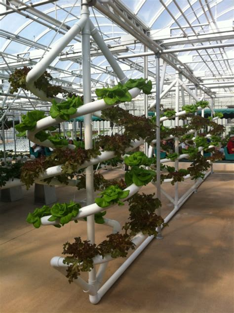vertical growing system epcot hydroponic gardening