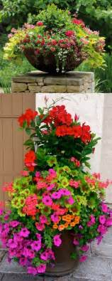 1566 best container gardening ideas images on pinterest