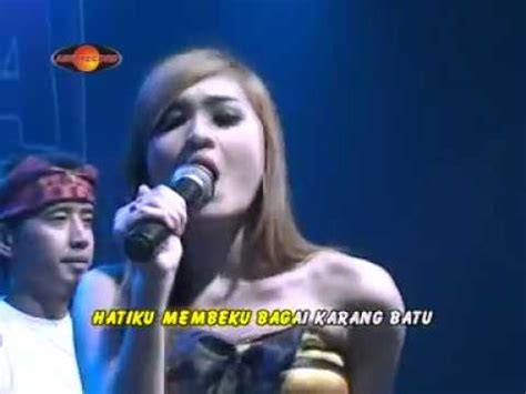 baby shark koplo full download hot dangdut cintaku mblaem mblaem nella