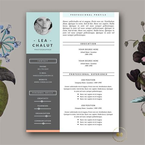 Creative Resume Brochure by Resume Template Creative Resume Design Cover Letter For Ms