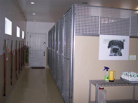 indoor kennels indoor kennels omahdesigns net