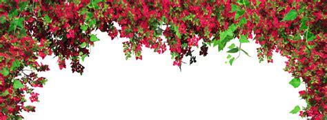 wallpaper tumblr png wallpaper flores png imagui