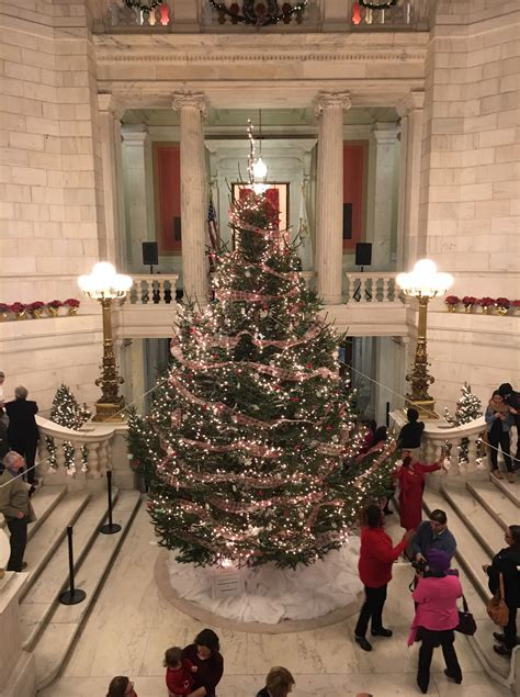 ri statehouse christmas tree lights up wpri 12