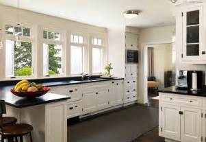 Kitchen Cabinets European Style by European Style Kitchen Cabinets Pictures The Greatest