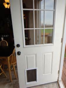Door For Dog Door With Dog Door Zoey Puppy Pinterest