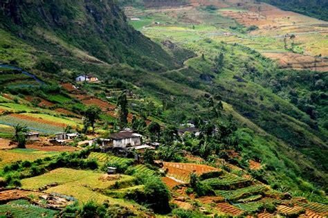 Paysage Sri Lanka info sri lanka paysage voyages cartes
