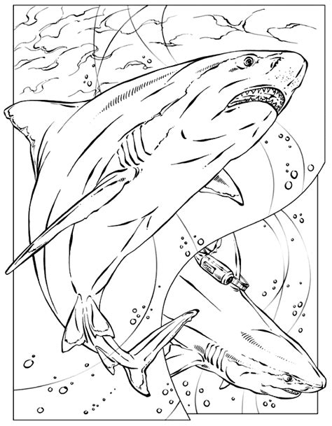 great white shark line art coloring page long hairstyles