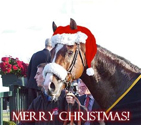 december  amateur jockeys association  great britain