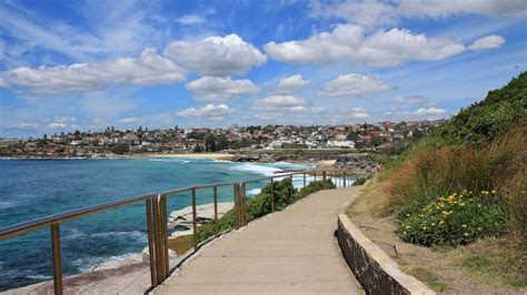 guide to coogee for backpackers mad monkey hostels