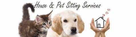 house sitting pet sitting services by reliable