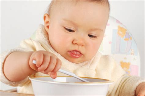 healthy fats baby baby and toddler finger food ideas galore proteins dairy