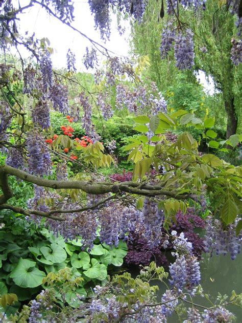Monet Gardens by Monet S Garden Giverny Monet S Garden